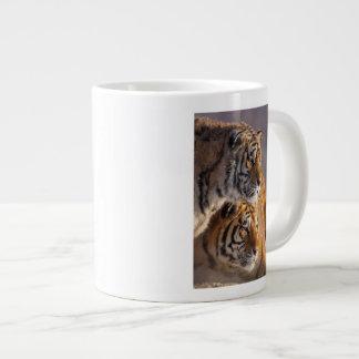 Deux tigres sibériens ensemble, la Chine Grande Tasse