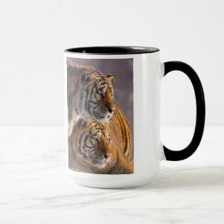 Deux tigres sibériens ensemble, la Chine Tasse