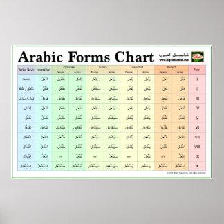 Diagramme arabe de formes (le verbe forme IX) Poster