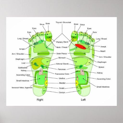 Diagramme de digitopuncture de pied affiche