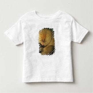 Didactylus soyeux de fourmilier, de Cyclopes de T-shirt Pour Les Tous Petits