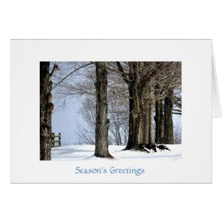 Dindes sauvages forageant dans la neige carte de vœux