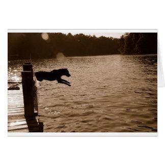 Dixie sautant du dock carte de vœux