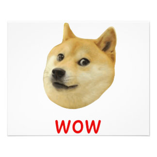 Doge très wow beaucoup de chien un tel Shiba Shibe Prospectus 11,4 Cm X 14,2 Cm