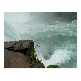 Domestique de chutes du Niagara de la carte Cartes Postales