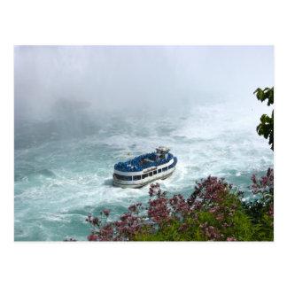 Domestique du bateau de brume aux chutes du cartes postales