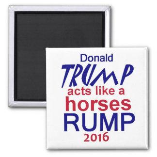Donald Trump 2016 Aimant