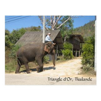 d'Or de triangle, Thailande Cartes Postales