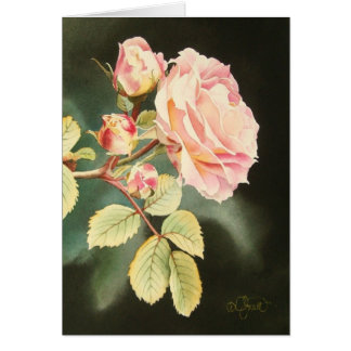Doucement carte de voeux de rose de rose
