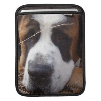 Douille d'iPad de chien de St Bernard Housses iPad