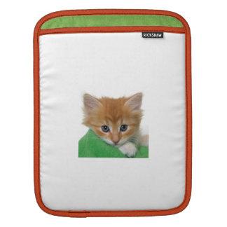 Douille orange de Rickshaw de chaton Poches iPad