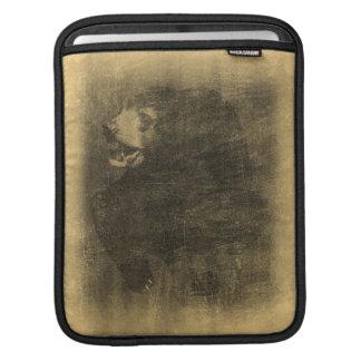 Douille vintage d'iPad d'art d'ours noir Housses iPad