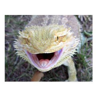 Dragon barbu heureux superbe carte postale