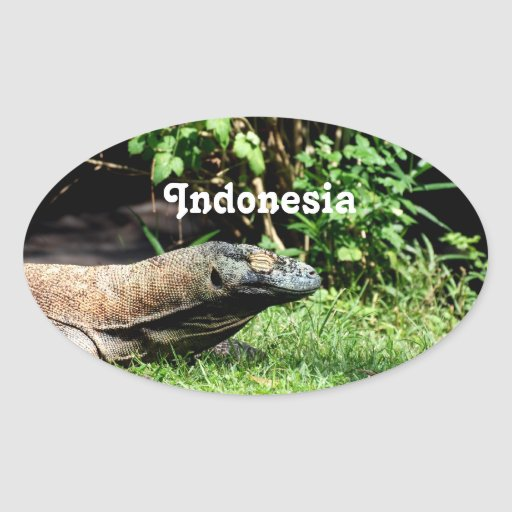Dragon de l'Indonésie Komodo Autocollants Ovales