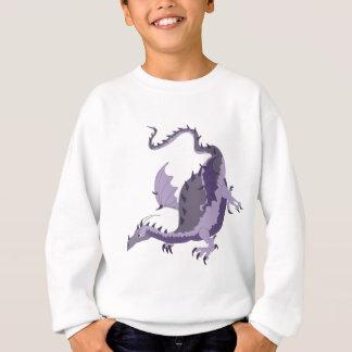 dragoncolour sweatshirt