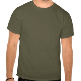 Drapeau de brosse de la Norvège T-shirts