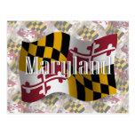 Drapeau de ondulation du Maryland Cartes Postales