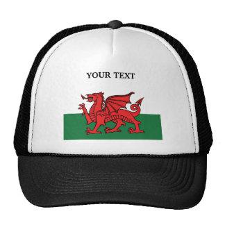 Drapeau du Pays de Galles Casquettes