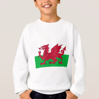 Drapeau du Pays de Galles - le dragon rouge - Sweatshirt