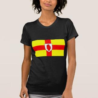 Drapeau d'Ulster - l'Irlande du Nord T-shirt