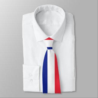 Drapeau français de cravate de coutume de la