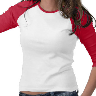 Drapeau lesbien gai de bulle de fierté d'arc-en-ci t-shirts