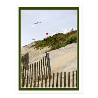 Drapeau rouge sur les dunes cartes postales