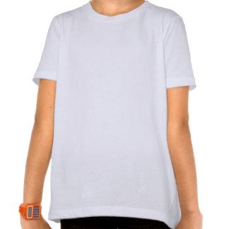 Drapeaux croisés de l'Autriche et de Salzbourg T-shirt