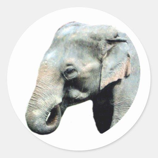 Droite d'éléphant de l'Indochine les cadeaux de Adhésif Rond