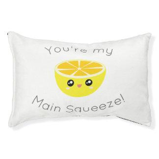 Drôle vous êtes mon humour principal de citron de lit pour chien