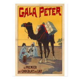 dromedary antique style postcard carte postale