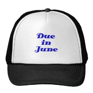 Dû en juin casquette de camionneur