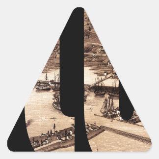duluth1883 sticker triangulaire
