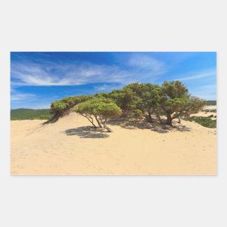 Dune de Piscinas - Sardaigne, Italie Autocollant Rectangulaire