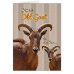 D'une vieille chèvre à une autre carte d'anniversa
