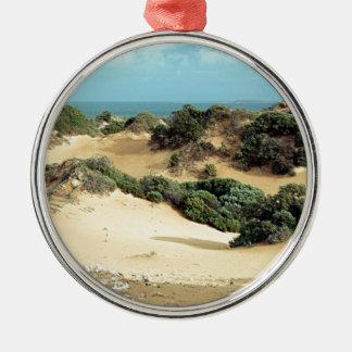 Dunes de sable balayées par le vent, Australie Ornement Rond Argenté