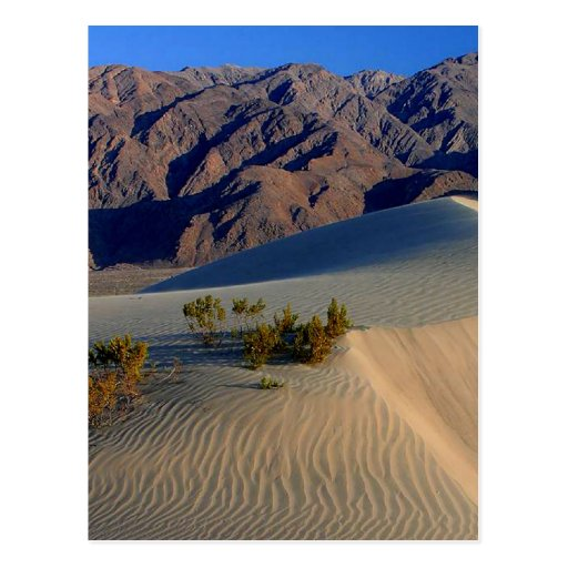 Dunes de sable Death Valley Carte Postale