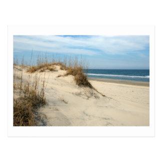 Dunes d'océan cartes postales