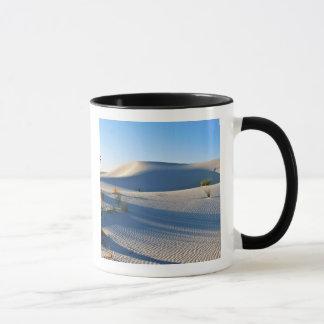 Dunes transversales, yucca, lumière de début de la mug