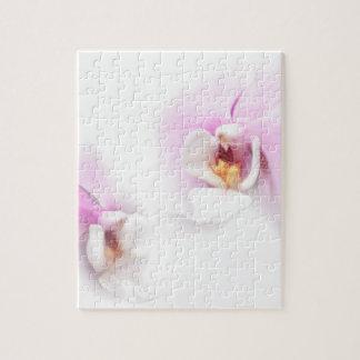 Duo de fleur de lèvre de Hilo de Phalaenopsis Puzzle