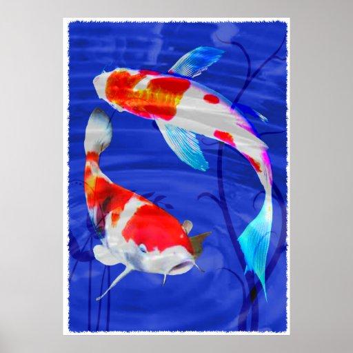 Duo de Kohaku dans l'étang bleu profond Posters
