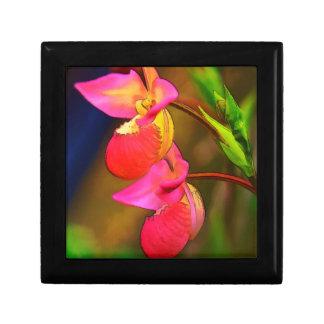 Duo stylisé de fleur d'orchidée de Phragmipedium Petite Boîte À Bijoux Carrée