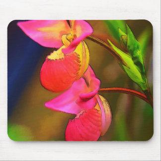 Duo stylisé de fleur d'orchidée de Phragmipedium Tapis De Souris