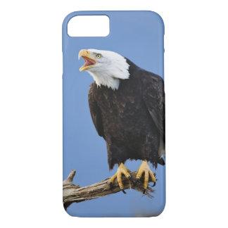 Eagle chauve appelant, Homer, Alaska, Haliaetus Coque iPhone 7