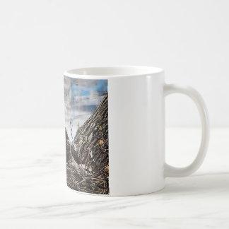 Eagle chauve avec des aiglons mug