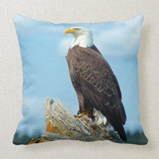 Eagle chauve été perché sur le rondin, Canada Oreillers