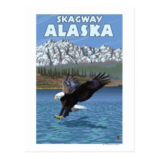 Eagle chauve plongeant - Skagway, Alaska Cartes Postales
