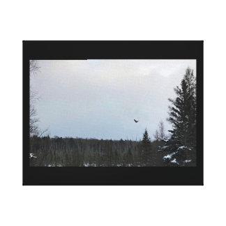 Eagle en vol sur la toile