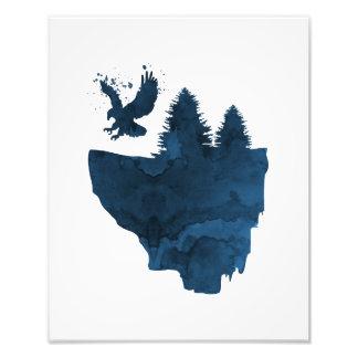 Eagle sur l'île de flottement impression photo