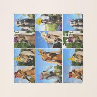 Écharpe de mousseline de soie de chèvre de bébé